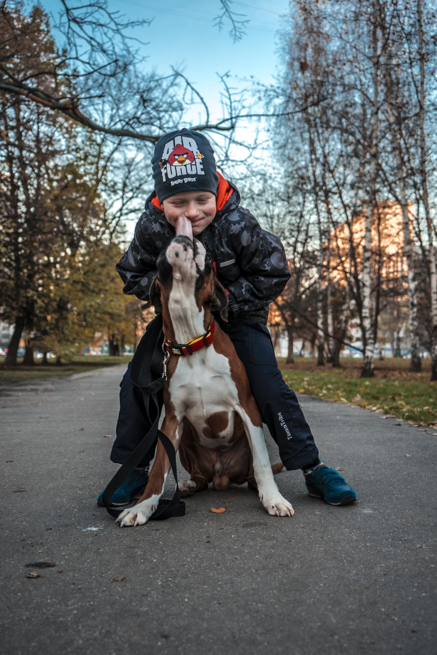 Москва, Жак, кобель, апрель 2018г - Страница 2 YhqIQUiw8qY