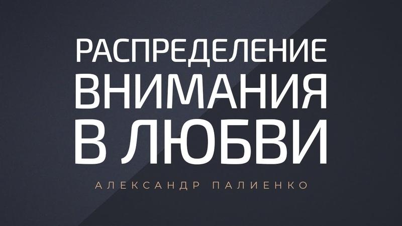 Распределение внимания в любви. Александр Палиенко.