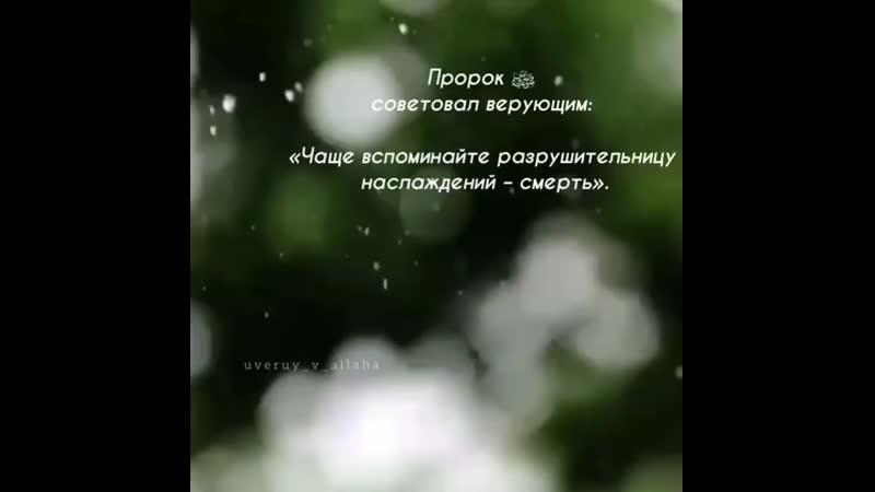 Uveruy_v_allahaBy18jKoiI38.mp4