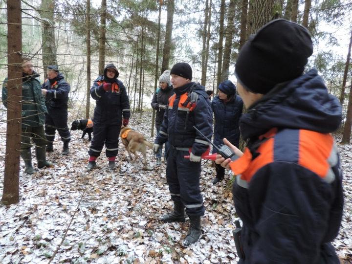 В Урупском районе ребенок ушел в лес и не вернулся