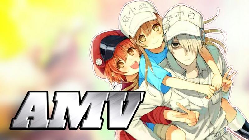 Hataraku Saibou「AMV」- Out of Control ᴴᴰ End