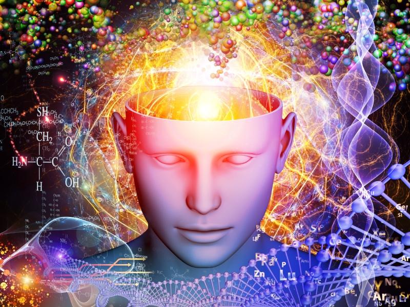 Что такое ноотропы? Настройте свой мозг и увеличьте умственные способности