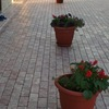 Лаборатория тротуарной плитки| NAVEK+