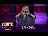 Lucinha Lins arrasa ao cantar Gal Costa e levanta os 100 jurados