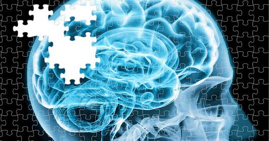 Химический дисбаланс мозга (часть №2)