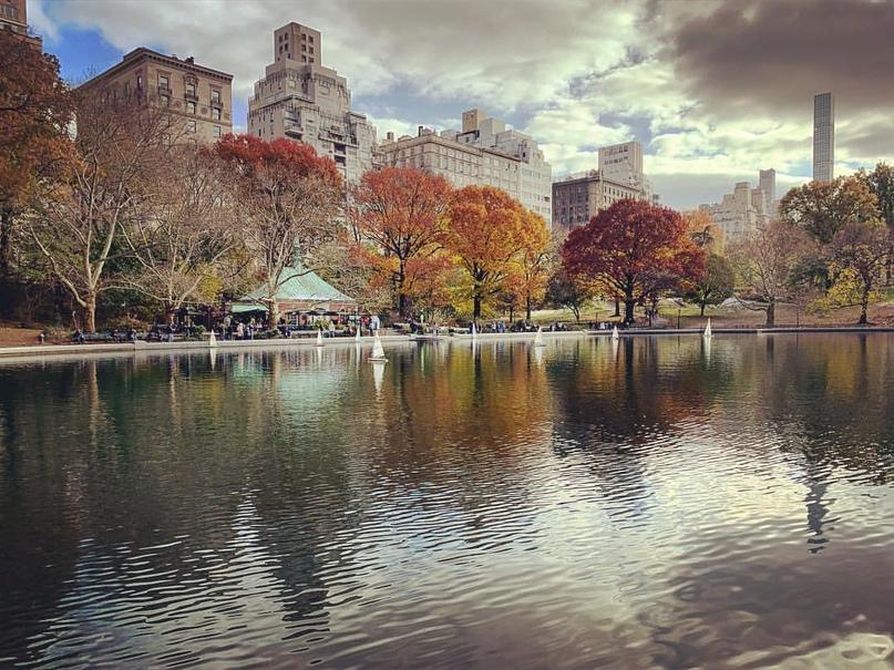 Паша Фишман | New York City