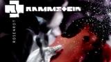 Rammstein - Rosenrot (instrumental cover)