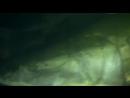 Речные Монстры: 1 сезон 5 серия Амазонские убийцы