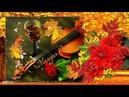 Осенняя музыкальная открытка С Днем Рождения!