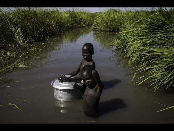 Жизнь на болоте | Болото Судд Южный Судан | Странник КН