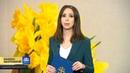 Конфеты для учителя в Госдуме нашли главных коррупционеров