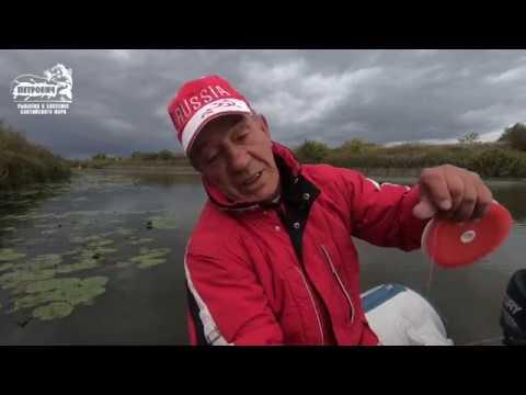 БОЛЬШОЙ УЛОВ VLOG Пойменные озера 3 реки Неман Славский район п Ясное Сентябрь 2018
