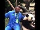 Пол Пирс и панда