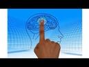Определение степени врожденного ума (мудрости)