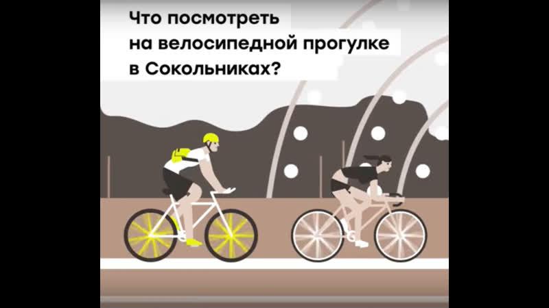 Велосипедная прогулка Амурская