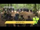 Полиция Северного Рейна-Вестфалии разогнала лесных жителей