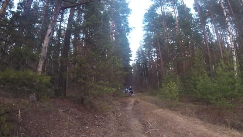 Восход вытаскивает ТТР из лесу))