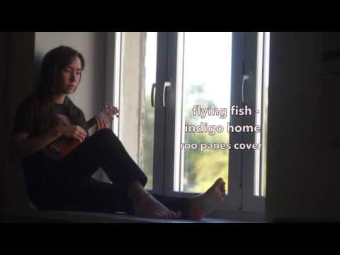Indigo Home - Roo Panes (Flying Fish Cover)