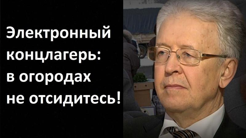 Валентин Катасонов. Электронный концлагерь в огородах не отсидитесь!
