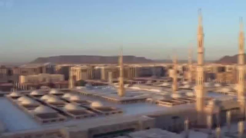Любовь к Пророку Мухаммаду ﷺ