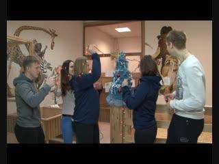 Говорят, под Новый год. Хоккеисты «Сокола» наряжают елку