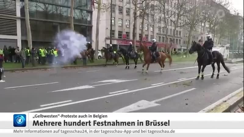 Gelbe Westen jetzt auch massiv in Belgien