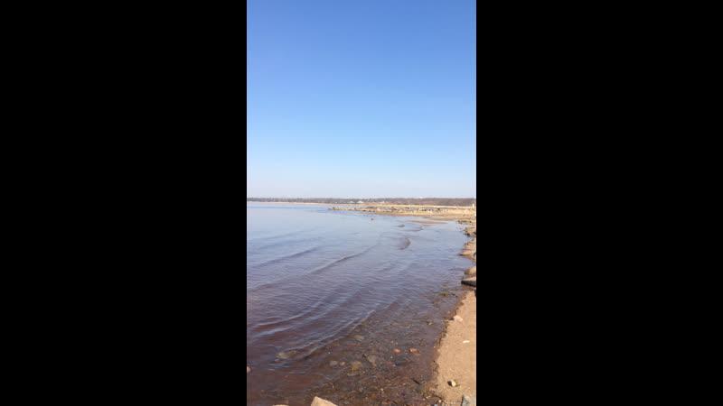 Место силы 🙏 Дубковский Пляж 🏖