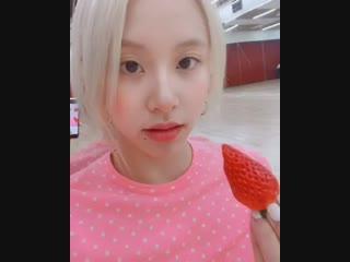 twicetagram chaeyoung