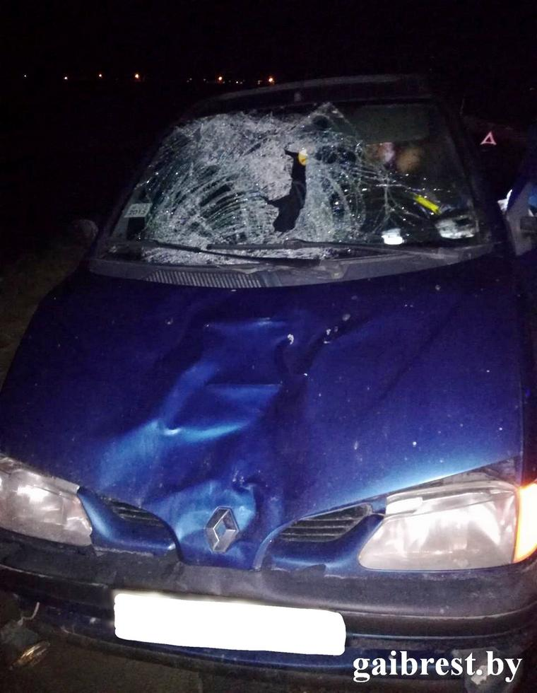 В Каменецком районе погиб пешеход в результате наезда «Рено»