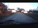 St. Bernard dog DRAGS a child across the road. · coub, коуб