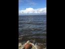 Сестрорецк.Парк «Дубки».Финский залив