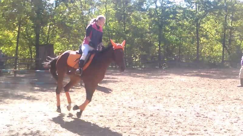 ІІІ конный фестиваль 13.10.2018