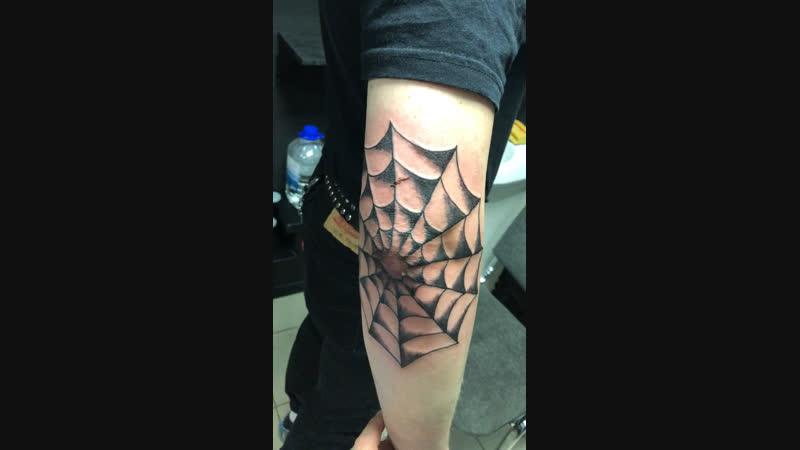 Asgard Tattoo (28.10.2018) паутина