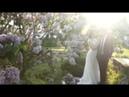 Красивый свадебный день.