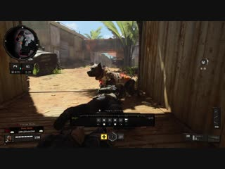 Nomad's Dog can't hurt you while prone. Black Ops 4