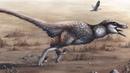 Учёные обнаружили крупнейшего пернатого динозавра