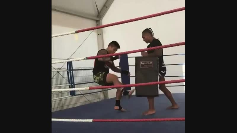 Ударная техника на лапах бойца UFC 🥊