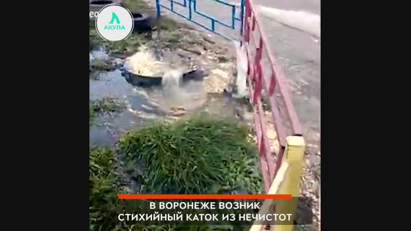 Воронежский каток АКУЛА