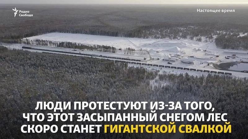 В Архангельской области давят людей экскаватором!