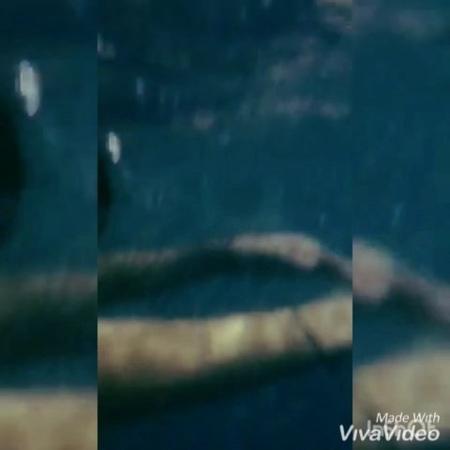 Sofa_ska video
