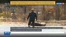 Новости на Россия 24 • В прорыве дамбы в Ишиме могут быть виновны норки и бобры