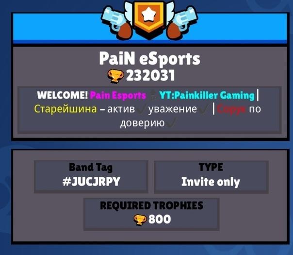 Добро пожаловать в клан PaiN eSports