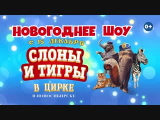 Итальянский цирк «Слоны и тигры»