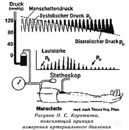 ЗВУКИ ВРАЧА КОРОТКОВА Метод измерения артериального давления, изобретённый российским хирургом, пионером современной сосудистой хирургии, Николаем Сергеевичем Коротковым (18741920), уже больше