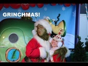 Our Day at Grinchmas at Universal Studios Hollywood with THE GRINCH!