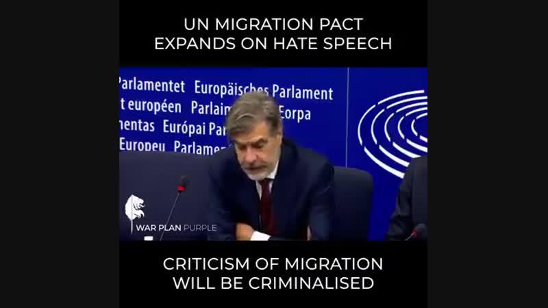 Kritik an Migration ist Haßrede und wird bestraft.