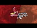 IL / 08.09.18 / STL Cardinals @ DET Tigers (2/3)