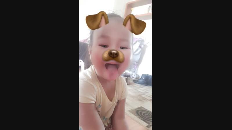 Snapchat-1171245988.mp4