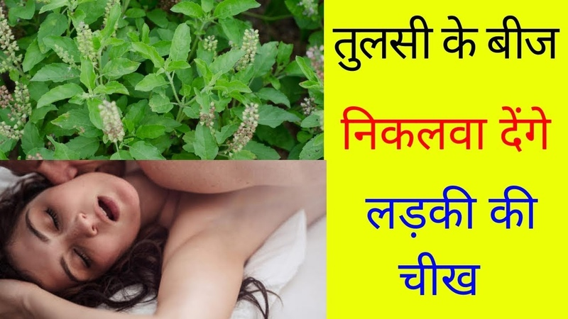 Health Benefits of Tulsi || health benefits to the body.