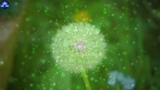 Activate Your Wish Chakra To Make Your Wish Come True, Meditation Music